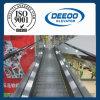 Caminhada movente da escada rolante elevada da segurança