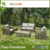 Sofa en osier de sofa de rotin de meubles de patio extérieur moderne de loisirs (CF807)