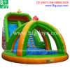 Aufblasbares Water Slide mit Pool Inflatable Slide für Adult (DJWSMD800006)