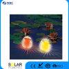 Indicatore luminoso di galleggiamento variabile colore solare della piscina del LED