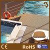 Le plancher de technologie neuve conçoit le Decking de coextrusion de piscine