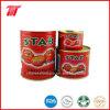Frisches Tomatenkonzentrat in in Büchsen konservierter Nahrung von China