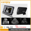 Scanner vétérinaire portatif d'ultrason de Farmscan V8 Palmtop - Martin