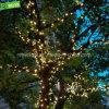 Chaîne chaude de quirlandes électriques de chaîne de caractères du blanc DEL de vacances pour l'éclairage de Noël de rue