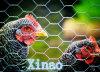 Mallas red hexagonal de Hexagonales/el 1/2