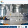 Fabrik-Preis-aufblasbares Modell, aufblasbares Kaninchen-Modell