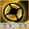 Luz de tira de 2835 LED 12V (XXW-FS-2835-120D)