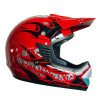 ECE And DOT Approval ATV / Dirt Bike Helmet