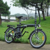 2017 20inch plegables la bici eléctrica 250W