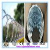 Frontière de sécurité de maille de barbelé de rasoir galvanisée par qualité chaude de vente
