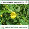 Flavanols hydrosolubles d'extrait de poudre de Nomame de casse d'approvisionnement d'usine 8% UV