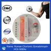 Gonadotropin chorionique humain injectable 5000iu/2000iu d'hormone stéroïde