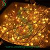 Водоустойчивый свет зажима 12V СИД для света украшения празднества Au