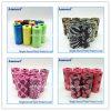 Support de rebut de sac de /Dog de distributeur de sac de dunette de Vanvas