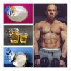 Polvo de los esteroides de Stanozol Winstrol del edificio del músculo (10418-03-8) 50mg/Ml inyectable