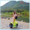 Ecorider Selbst 2016, der Elektromotor-Roller E-Roller balanciert