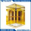 Petit ascenseur de passager de pièce de machine de FUJI avec du ce de GV TUV