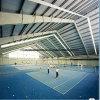 Grande costruzione dell'interno del campo da giuoco della struttura d'acciaio dello spazio con il disegno moderno