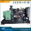 Groupe électrogène réglé se produisant diesel de générateurs d'utilisation de jeux à la maison de Genarator