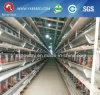 De Laag van de Prijs van de fabriek en het Voeden van de Grill het Landbouwbedrijf van het Gevogelte van het Project de Automatische Kooi van de Laag van de Kip