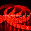 Lista roja de la raya LED de la luz de tira del LED SMD5630 60LEDs 12VDC