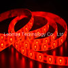 Rote Liste des LED-Streifen-Licht-SMD5630 60LEDs 12VDC des Streifen-LED