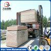 MDF da melamina do uso da mobília do painel 1220X2440xmm