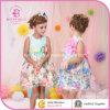 Kleding van de Boutique van de Kinderen van de fabriek de In het groot (6067 6097#)