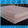Álamo Plywood Manufacturer en China, Bintangor Okoume Plywood para Furniture