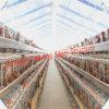 저가 가금 농장에 있는 강철 조립식 닭장 집