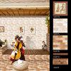 Cocina y azulejos y frontera de cerámica esmaltados cuarto de baño de la pared