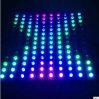 el poder más elevado LED al aire libre de 24PCS DC24V enciende la arandela 88306 24W de la pared
