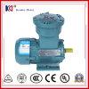 Motore elettrico protetto contro le esplosioni a tre fasi di CA IP55 dal fornitore