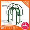 Saleのための背部Exercise Machine Park Outdoor Fitness Equipment