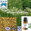 Aceite de alcaravea con la muestra libre