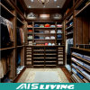Шкаф шкафа Китая выполненный на заказ дешевый (AIS-W012)