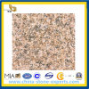Flooring Outdoor (YQG-GS1013)のための中国のGranite Zhangpu Rust Granite Slabs