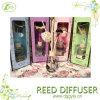 Projeto OEM personalizado Fragrance Aroma Reed difusor / Home Perfume Gift Set / Home Fragrance difusor de óleos essenciais com óleo de perfume 100ml