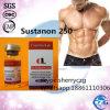 Bodybuildendes aufbauende Steroid-Testosteron Sustanon 250