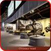 Alta decorazione della testa del dinosauro di simulazione del campo da giuoco dell'interno