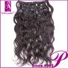 100% clip del pelo humano en la extensión del pelo (GP-CI001)