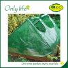 Cloche парника Onlylife BSCI рамка прозрачного зеленого многофункционального холодная