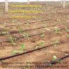 Plastikprodukt - Plastikberieselung-Band für Landwirtschafts-Bewässerung