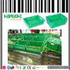 Pila Nest Plastic Crate per la memoria di Vegetable