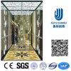 Лифт резиденции домашний с приводом AC Vvvf беззубчатым (RLS-249)