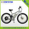 En15194 Fahrrad-Fahrrad des Schnee-E