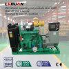 conjunto de generador accionado del gas natural del motor de gas natural 80kw pequeño para la venta