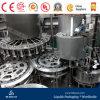 Terminer l'usine remplissante mis en bouteille de lait de /Soybean d'arachide