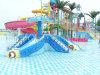 子供の演劇のタコ水公園の乗車