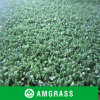High Quality Hockey Use Synthetic Grass (ANC-15A)